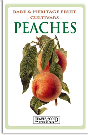 Rare and Heritage Fruit - Peaches