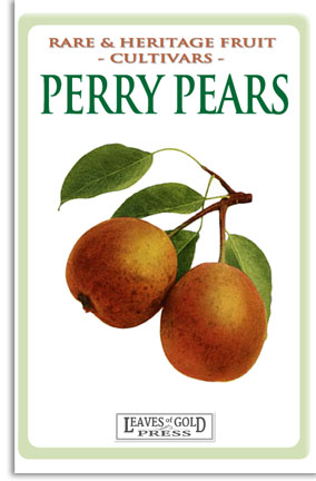 Rare and Heritage Fruit - Perry Pears
