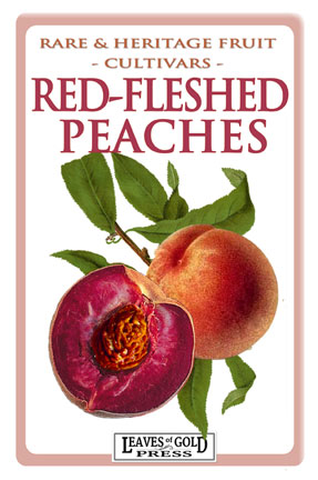 Rare and Heritage Fruit - Red-fleshed Peaches
